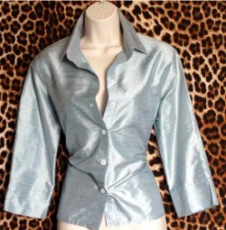 Gently Worn Top Silk Blouse Silvery