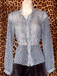 Gently Worn Top Striped Blouse